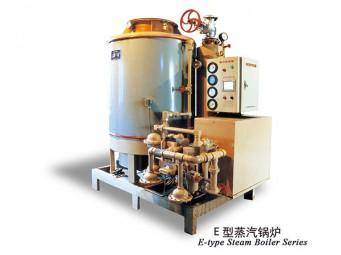 莱顿EO型蒸汽锅炉